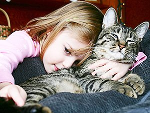 Veterinarian Rescue Dog and Cat Health Plans: Gray Tabby Cat with Little Girl